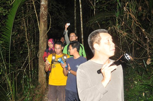 Taman Negara, The First Time