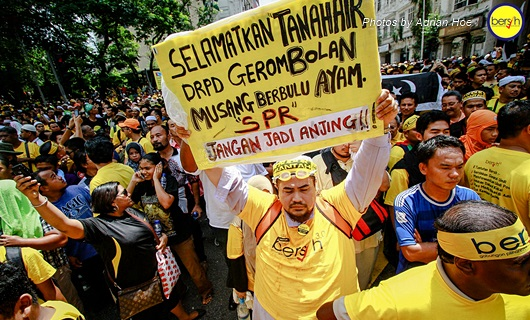 Bersih 3.0: Pictorial Depiction of the Event 12