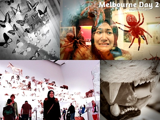 Melbourne Day 2 - Museum 6
