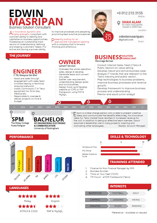 Resume in Info Graphic Format