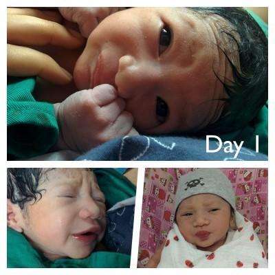 day1 amira